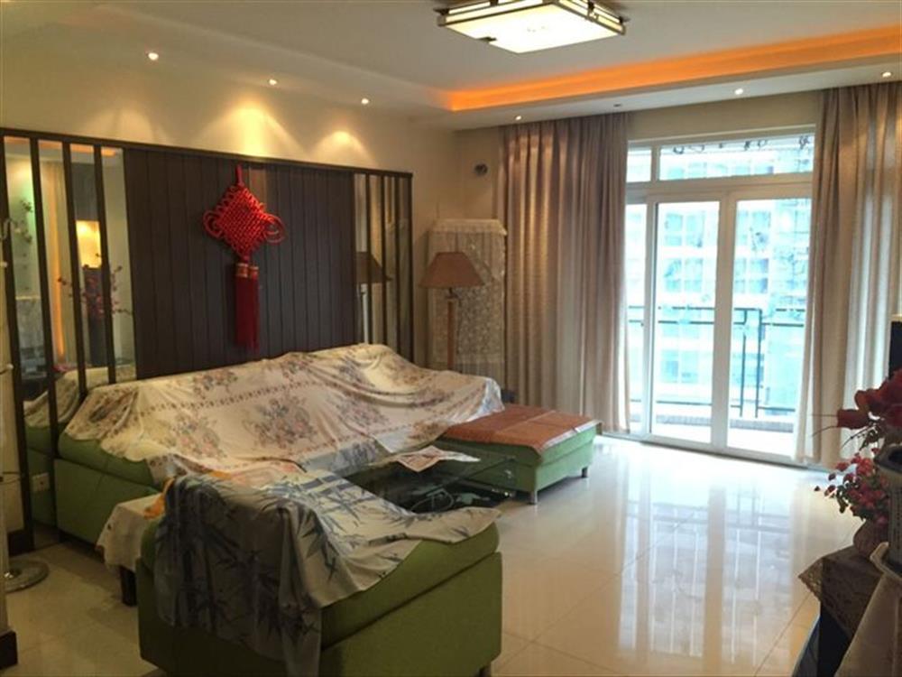 龙湖枫香庭-客厅