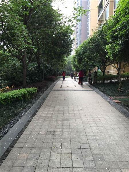 珠江太阳城A区-花园